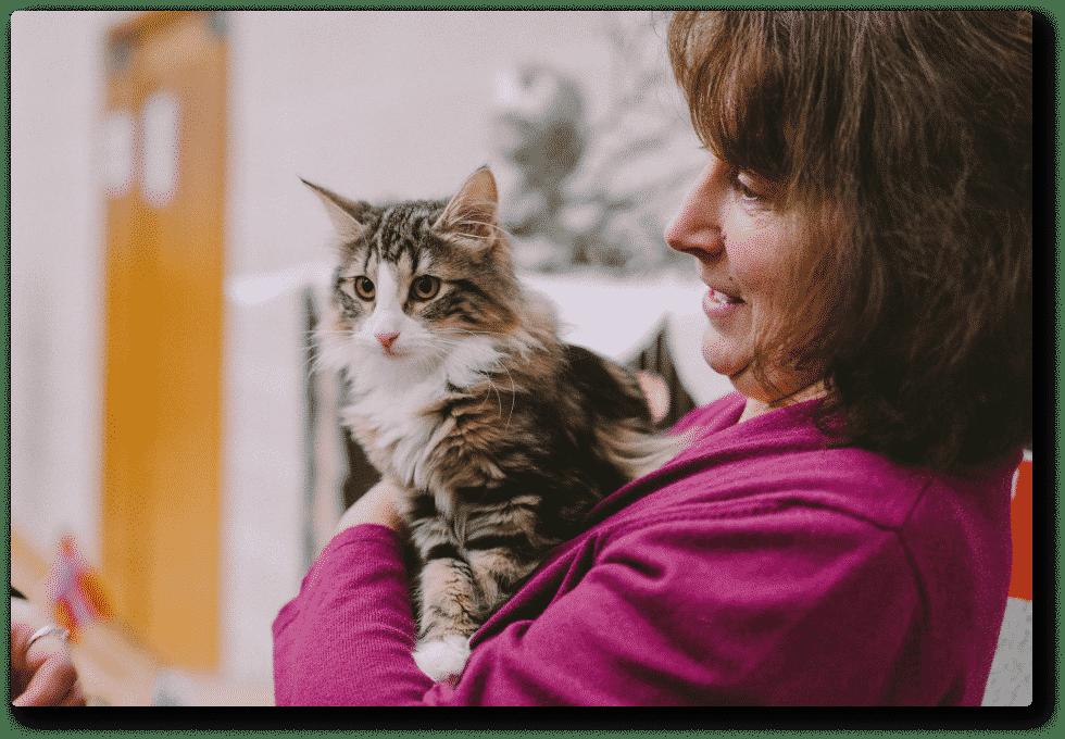 Le stress du chat - Chatterie Sainte Cyle - Hôtels pour chat à Marseille et Aix en provence
